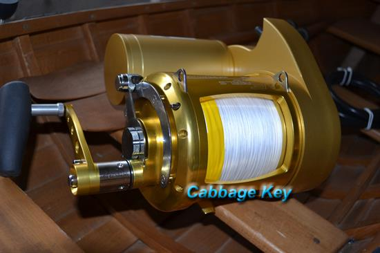 Dolphin electric reels for Electric fishing reels
